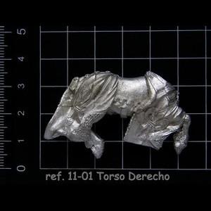 11-01 4-4 Torso Derecho