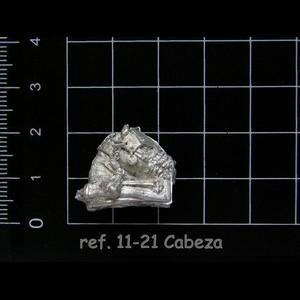 11-21 3-7 Cabeza Caballo