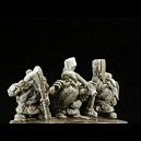 Veteranos Enanos I