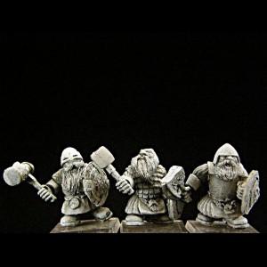 Dwarf Warriors BOX