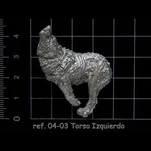 04-03 6-6 Torso Izquierdo