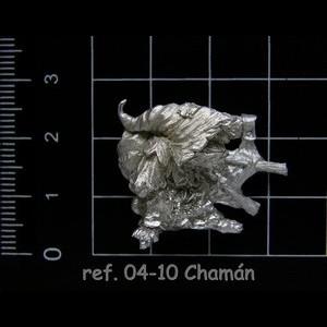04-10 2-2 Chamán