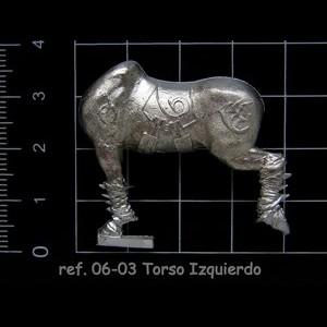 06-03  10-11 Torso Izuierdo