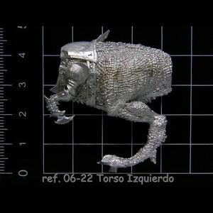 06-22 6-6 Torso Izquierdo